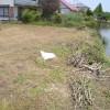 kawagishi2